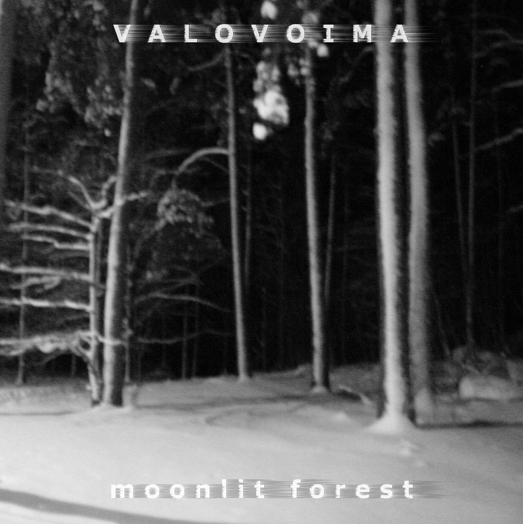 Valovoima – Moonlit Forest